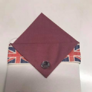 Deep Pink Single Point Pocket Hankie With Pin